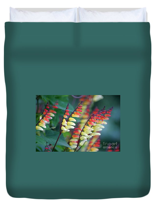 Spanish Flag Duvet Cover featuring the photograph Spanish Flag by Living Color Photography Lorraine Lynch