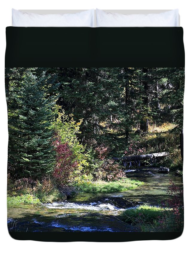 Landscape Duvet Cover featuring the photograph Spearfish Canyon by Donald J Gray