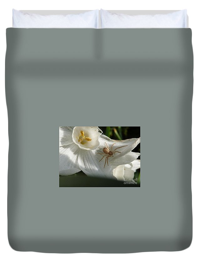 Spider Duvet Cover featuring the photograph Spider In Narcissus by Rain Shine