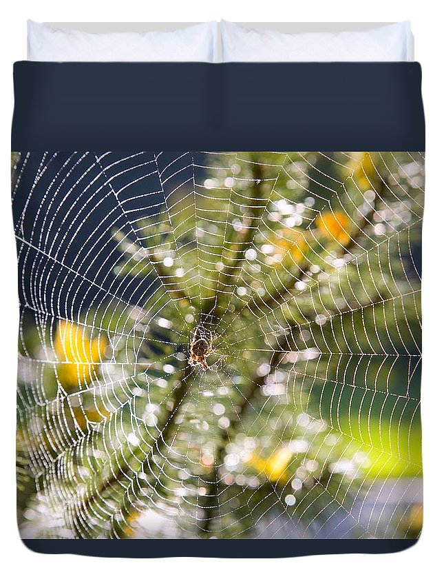 Color Image Duvet Cover featuring the photograph Spider On Web by Craig Tuttle