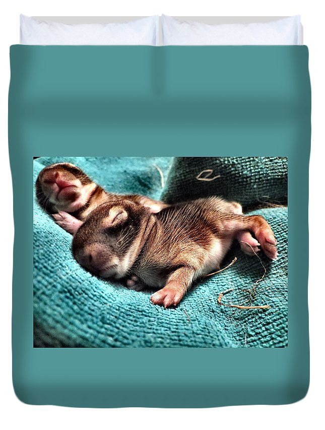 Baby Duvet Cover featuring the photograph Spooning by Art Dingo