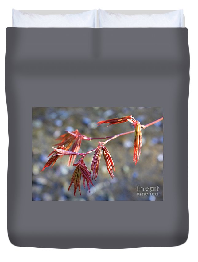 Botanical Duvet Cover featuring the photograph Springtime Japanese Maple Leaves by Carol Groenen
