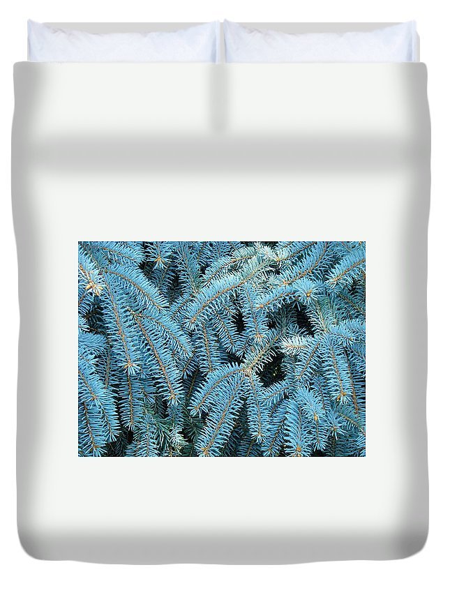Spruce Duvet Cover featuring the photograph Spruce Conifer Nature Art Prints Trees by Baslee Troutman