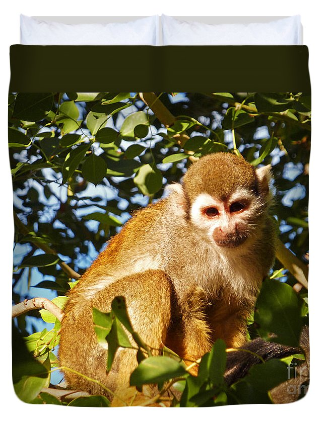 Squirrel Monkey Duvet Cover featuring the photograph Squirrel Monkey by Methune Hively