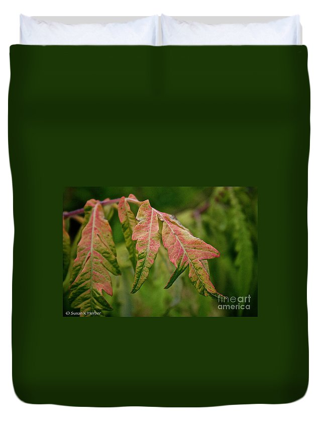 Bush Duvet Cover featuring the photograph Staghorn Sumac by Susan Herber