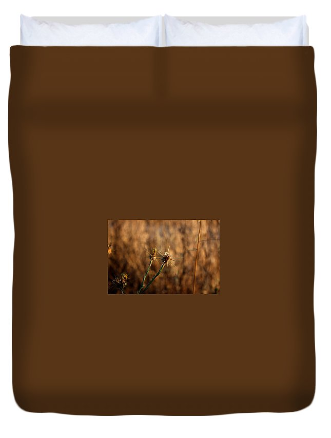 Close-up Duvet Cover featuring the photograph Star Thistle by Leonard Sharp