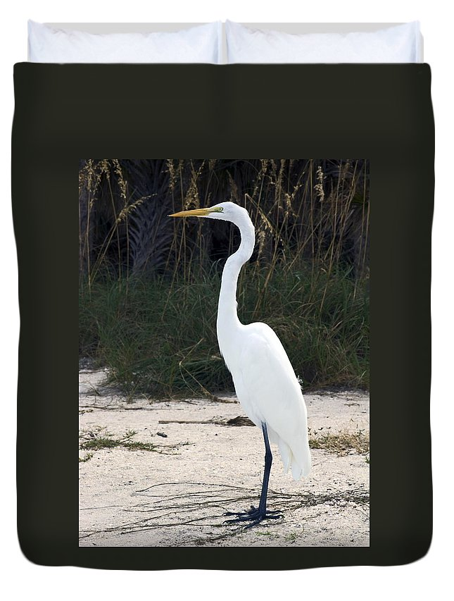 Great Egret Standing Duvet Cover featuring the photograph Stately Egret by Sally Weigand