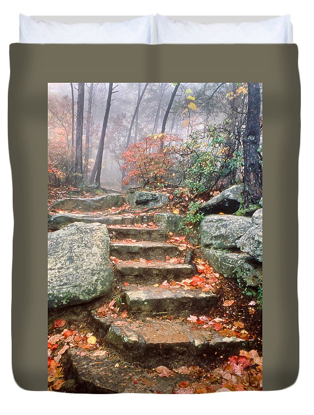 Steps Duvet Cover featuring the photograph Steps Cloudland Canyon by Tom and Pat Cory