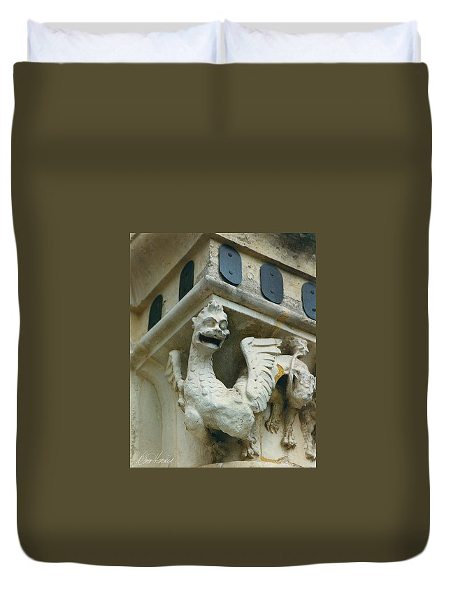 Stone Duvet Cover featuring the photograph Stone Beastie by Diana Haronis