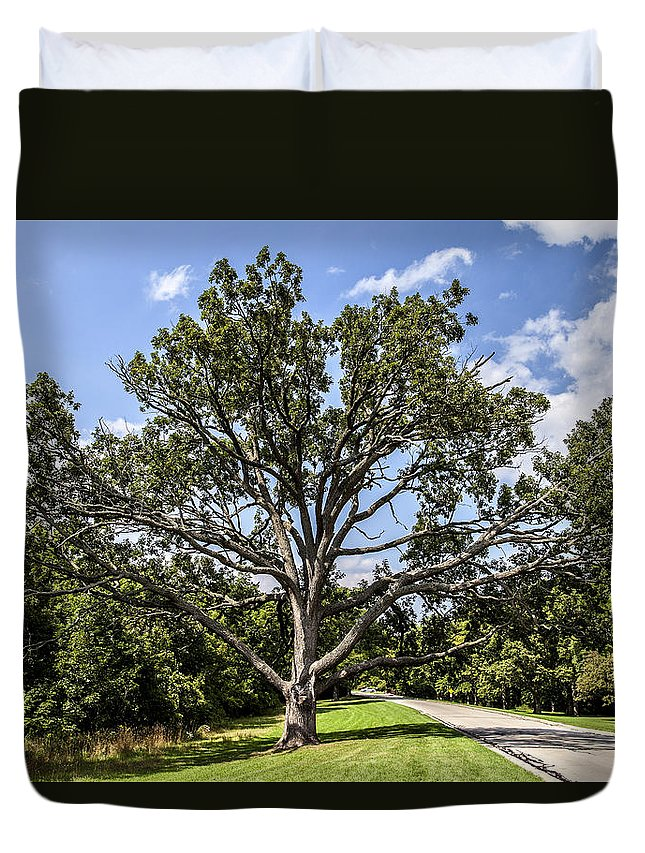 Cj Schmit Duvet Cover featuring the photograph Stretched Out by CJ Schmit