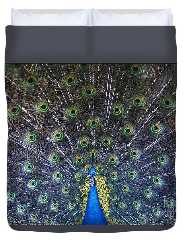 Birds Duvet Cover featuring the photograph Showoff by Sandra Bronstein