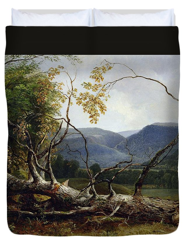 American Landscape; Tree; Fallen; Branch; Forest; Countryside; Hudson River School; Duvet Cover featuring the painting Study From Nature - Stratton Notch by Asher Brown Durand