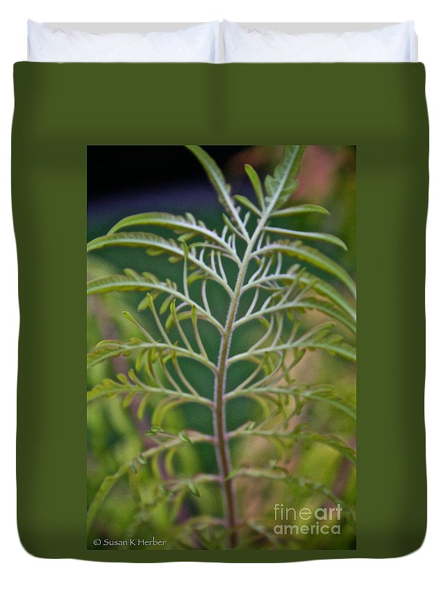 Bush Duvet Cover featuring the photograph Sumac Frond by Susan Herber