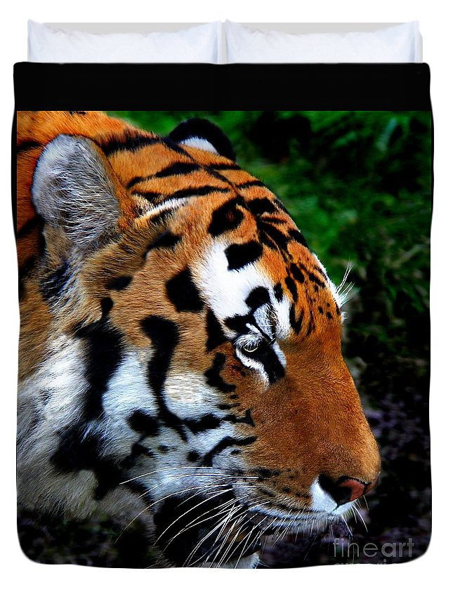 Tiger Duvet Cover featuring the photograph Sumatran Strength by Davandra Cribbie