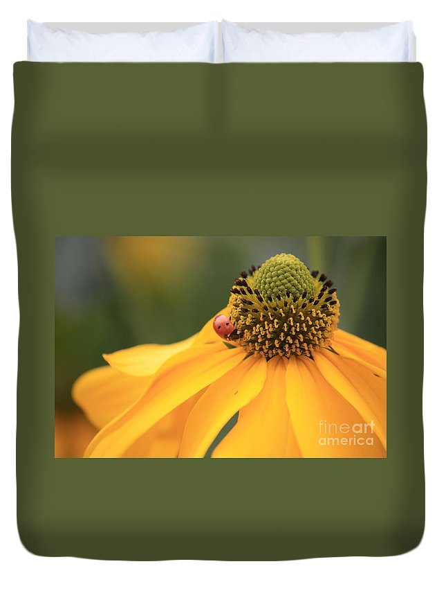 Ladybug Duvet Cover featuring the photograph Summer Beauty by Carol Groenen