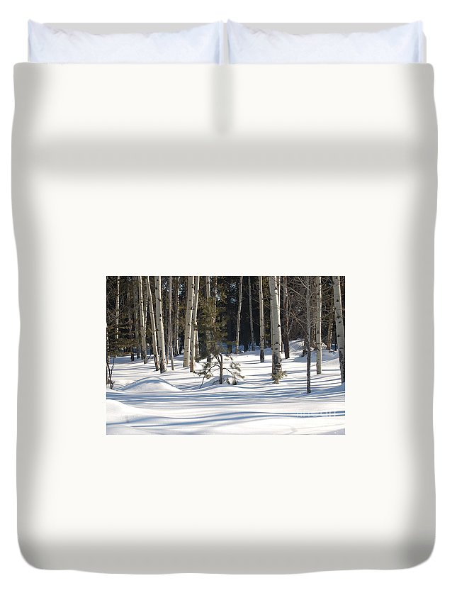 Snow Duvet Cover featuring the photograph Sun And Shawdows by Lucy Bounds