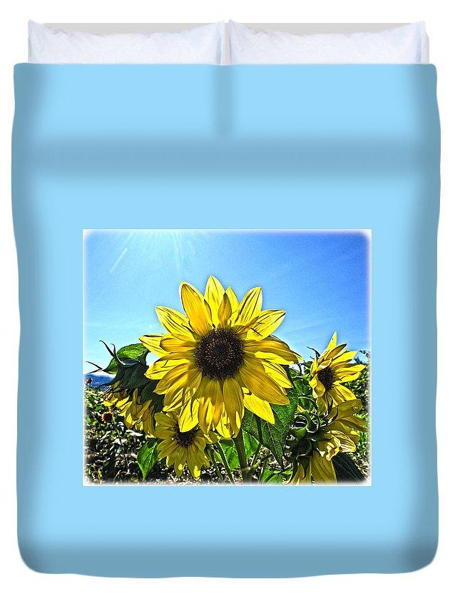 Sunflower Duvet Cover featuring the photograph Sun Flower by Steve McKinzie
