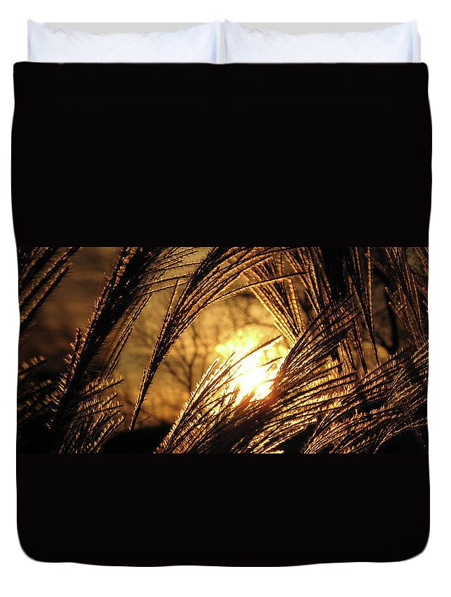 Sunset Duvet Cover featuring the photograph Sun In Grass Panoramic by Amy Tyler