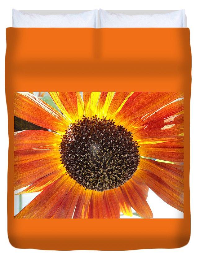 Sunflower Duvet Cover featuring the photograph Sunburst by Shannon Grissom
