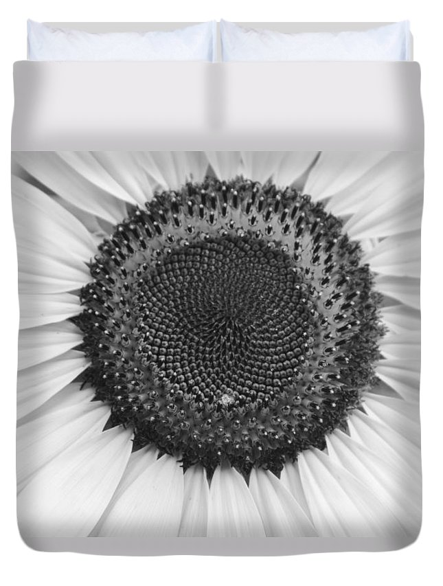 Floral Duvet Cover featuring the photograph Sunflower Center Black And White by James BO Insogna