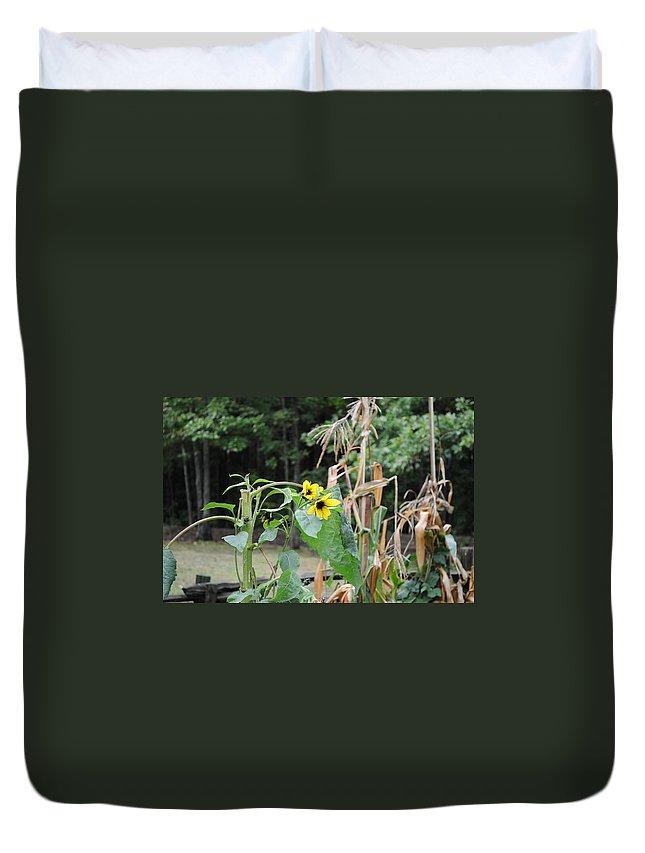Sunflower Duvet Cover featuring the photograph Sunflower by Elaine Mikkelstrup