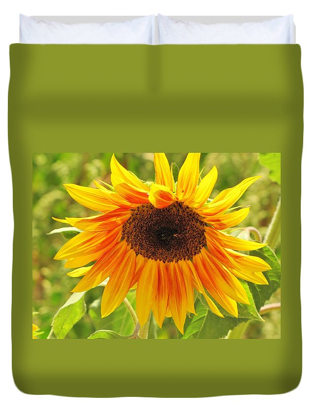 Sunflowers Duvet Cover featuring the photograph Sunny Bright Sunflower by Michelle Cassella