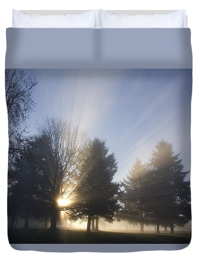 Foggy Duvet Cover featuring the photograph Sunray Through Trees And Fog by Craig Tuttle