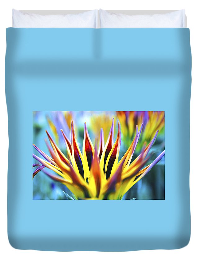 Sunrise Duvet Cover featuring the photograph Sunrise Flower by Sumit Mehndiratta