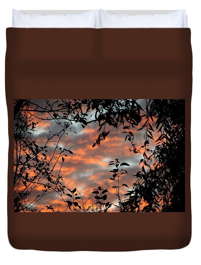 Sunrise Duvet Cover featuring the photograph Sunrise Leaves by Jeff Galbraith