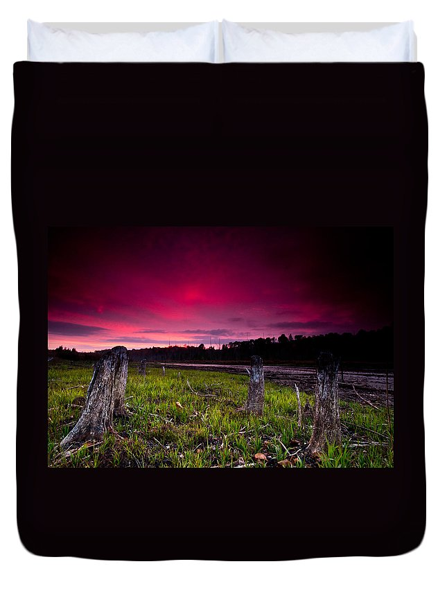 Sunset Duvet Cover featuring the photograph Sunset Stumps by Cale Best