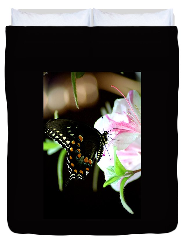 Swallowtail Duvet Cover featuring the photograph Swallowtail by David Weeks