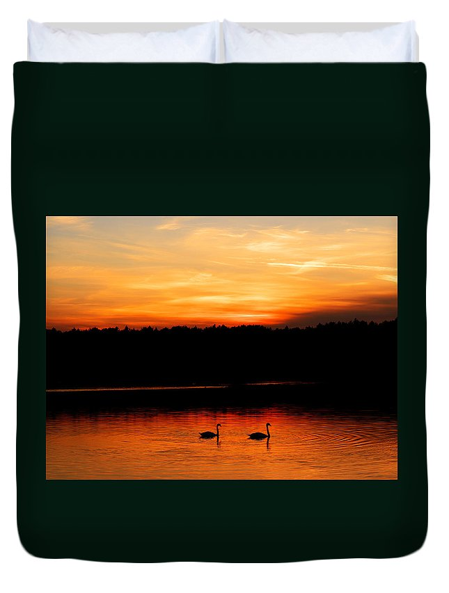 Swan Duvet Cover featuring the photograph Swans In The Sunset by Ivan Slosar