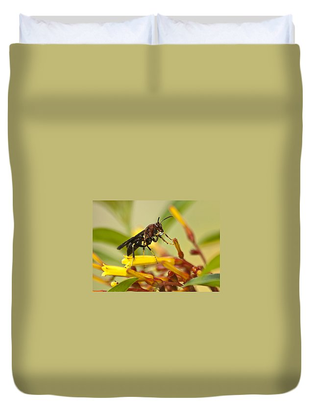 Wasp Duvet Cover featuring the photograph Sweet Morning Dew by Carolyn Marshall
