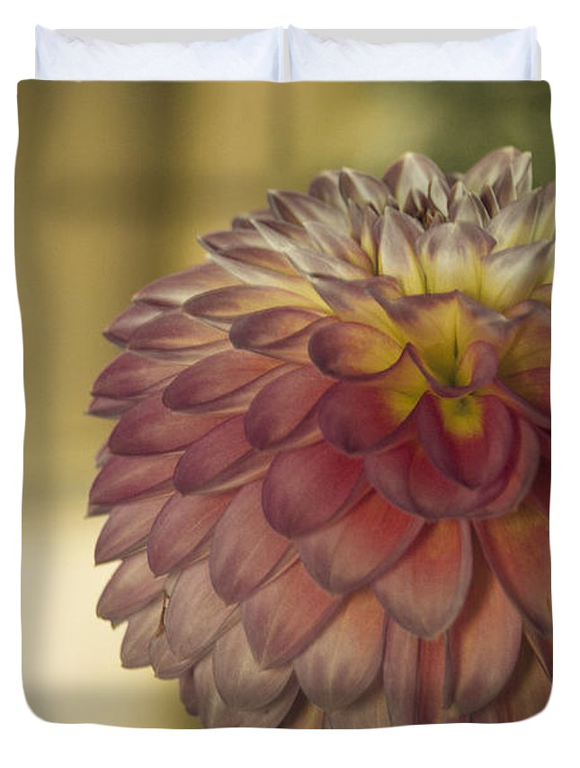 Flower Duvet Cover featuring the photograph Sweet Shot by Trish Tritz