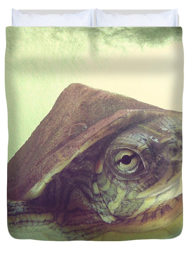 Painted Turtle Duvet Covers