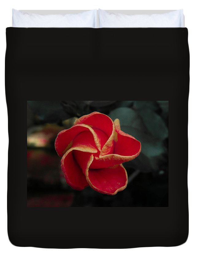 Flower Duvet Cover featuring the photograph Swirling Star by Trish Tritz