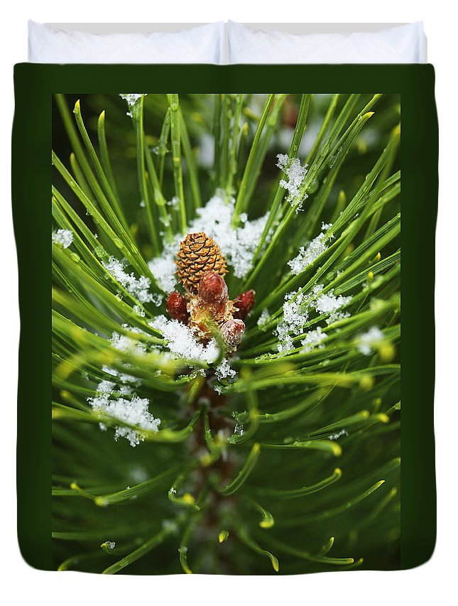 Ice Duvet Cover featuring the photograph Swirls Of Green by Marilyn Hunt