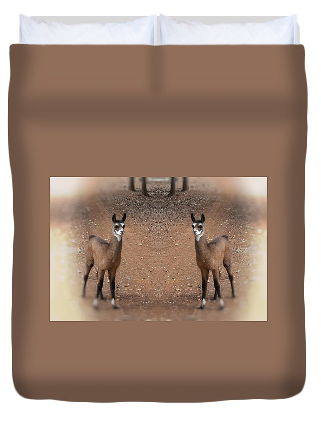 Juvenile Duvet Cover featuring the photograph Synchronized by Douglas Barnard