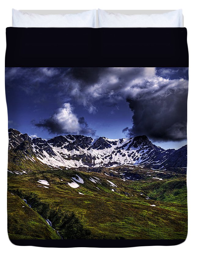 Landscape Duvet Cover featuring the photograph Talkeetna Mountains In Summer by Michele Cornelius