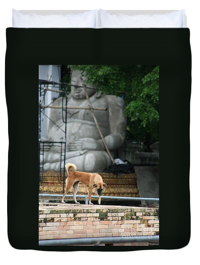 Dog Duvet Cover featuring the photograph Temple Dog And Buddha by Nola Lee Kelsey