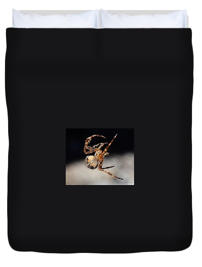 Spider Duvet Cover featuring the photograph Tending The Web Invisible by Chriss Pagani