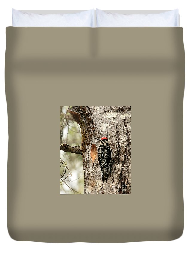 Woodpecker Duvet Cover featuring the photograph Thats Not My Nest by Lloyd Alexander