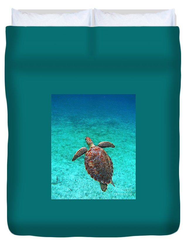 Sea Turtle Duvet Cover featuring the photograph The Ascension by Li Newton