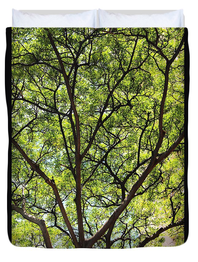 Tree Duvet Cover featuring the photograph The Beauty Of Nature by Kerri Ligatich