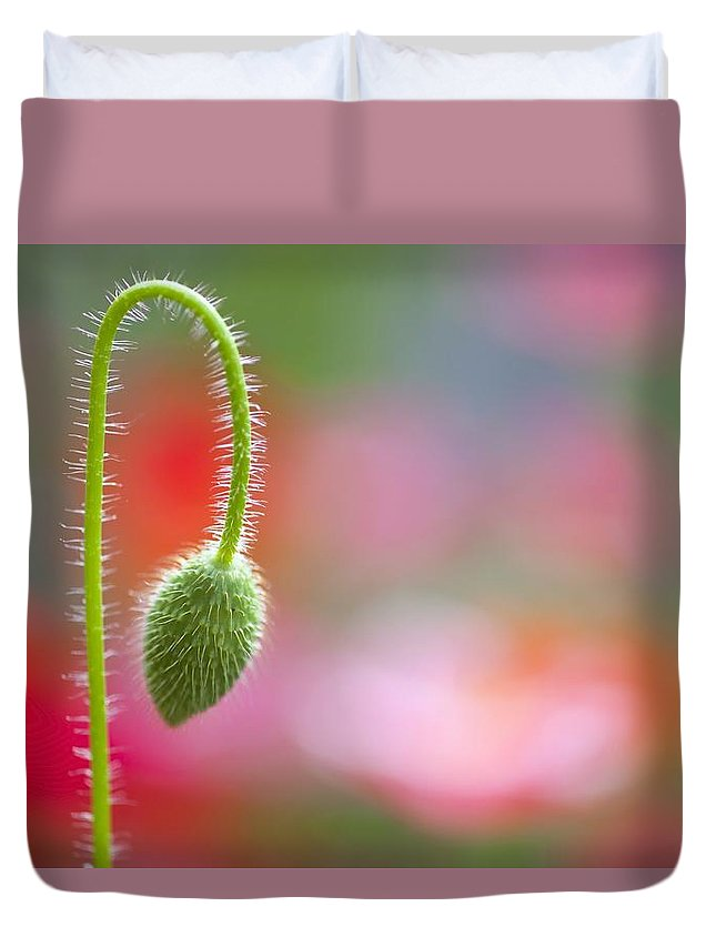 Stem Duvet Cover featuring the photograph The Bud Of A Wildflower In Columbia by Craig Tuttle