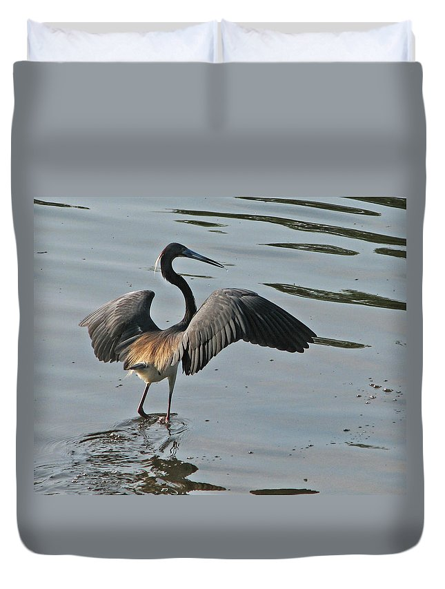 Nature Duvet Cover featuring the photograph The Chase by Peg Urban