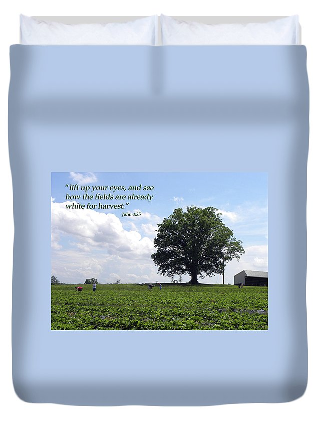 Harvest Duvet Cover featuring the photograph The Harvest by Sandi OReilly