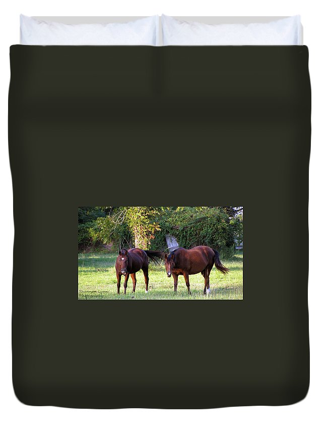 Horses Duvet Cover featuring the photograph The Horses by Shannon Nolting