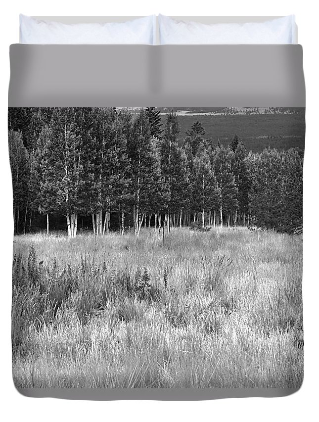 Landscape Duvet Cover featuring the photograph The Meadow Black And White by Phyllis Denton