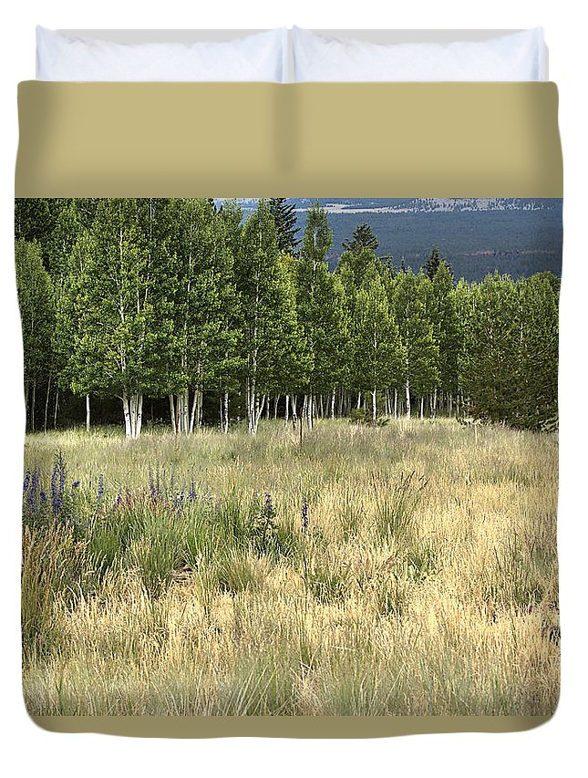 Landscape Duvet Cover featuring the photograph The Meadow by Phyllis Denton